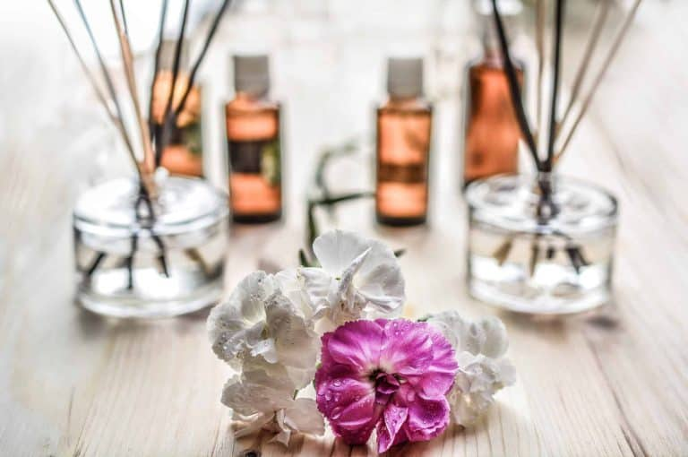 Flower Therapy How It Will Be Beneficial For Health