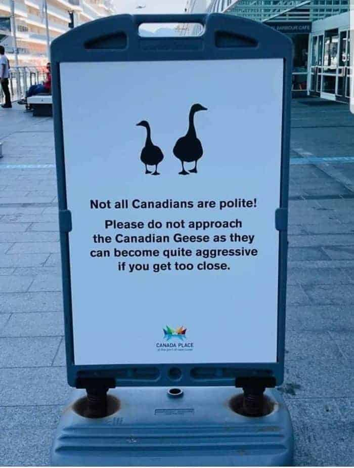 things that only happen in canada