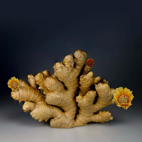 Ginger as a home remedy for abdominal pain