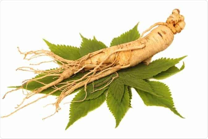 Ginseng For Controlling Sugar Addiction