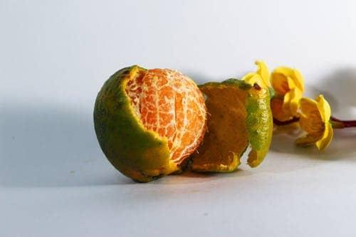 Orange peel for lighten dark skin